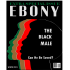 Fake image of an Ebony magazine covers with shadows of men heads colored red, green, black, brown